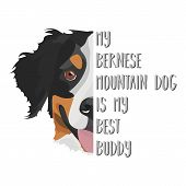 Illustration Dog Bernese Mountain Dog - My Bernese Mountain Dog Is My Best Friend. Puppy Dog ​​eyes, poster