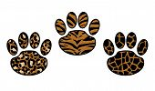Set Of Paw Print: Leopard, Tiger And Cheetah. Trendy Animal Print. Fashion Vector Illustration For P poster