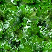 Seamless Green Tropical Jungle Plant Leaves Pattern Background. Close Up Of Bouquets Of Various Fres poster