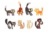 Flat Vector Set Of Different Cats. Funny Cartoon Characters. Home Pets. Cute Domestic Animals. Eleme poster