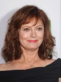 LOS ANGELES - OCT 22:  Susan Sarandon arrives to Hollywood Film Awards Gala 2012  on October 22, 201