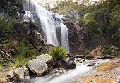 pic of mckenzie  - MacKenzie Falls waterfall in the Grampians region of Victoria Australia - JPG