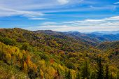 Great Smokey Mountains Landscape