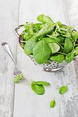 pic of sorrel  - fresh sorrel leaves in a colander on the old wooden background - JPG