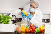 stock photo of corn  - Food scientist looking at corn cob at the university - JPG