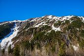 pic of denali national park  - A Craggy Mountain Peak - JPG