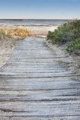 stock photo of cape-cod  - Wooden walkway to beach on Cape Cod - JPG