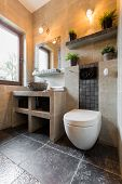picture of toilet  - Vertical interior of the bathroom with toilet - JPG