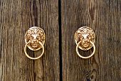 picture of lions-head  - Door knocker in the form of a lion - JPG