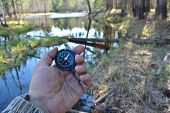 stock photo of compass  - With compass in a spring forest - JPG