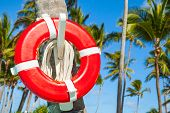 stock photo of coast guard  - Red life buoy hanging on palm tree Atlantic ocean coast Dominican republic - JPG