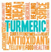 picture of ringworm  - Turmeric word cloud on a white background - JPG