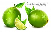 pic of lime  - Fresh limes with leaves and lime slice - JPG