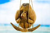stock photo of monkeys  - Coconut monkey on a swing at the beach - JPG
