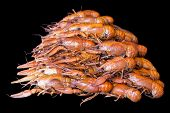 image of crawfish  - Photo of background with red boiled crawfishes
