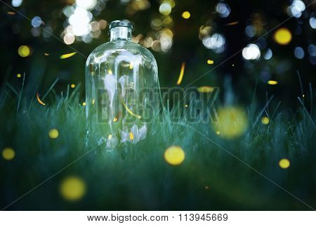 Fireflies in a jar Long