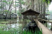 stock photo of bayou  - Boat docks amid the cypress trees at Caddo Lake - JPG