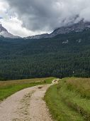 Winding Walking Footpath Through Meadows, Italian Alps Mountains In Background poster
