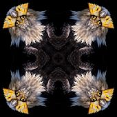 Seamless Symmetrical Pattern Abstract Animal Tile Texture. poster