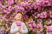 Girl Enjoying Floral Aroma. Pollen Allergy Concept. Kid On Pink Flowers Sakura Tree Background. Alle poster