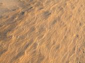 Golden Beach Sand, Background Pattern Texture. Beach Sand Background. Sand Texture. Brown Sand. Back poster