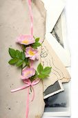 Bouquet of a dog rose flowers with the retro letters and photos