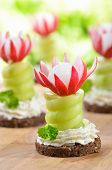 foto of roughage  - Decorated cheese appetizers - JPG