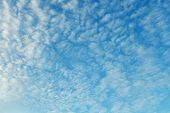 Altocumulus Clouds - Natural Skyscape Background