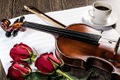 stock photo of string instrument  - Violin - JPG