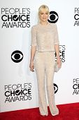 LOS ANGELES - JAN 8: Anna Faris at The People's Choice Awards at the Nokia Theater L.A. Live on Janu