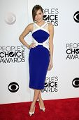 LOS ANGELES - JAN 8: Allison Williams at The People's Choice Awards at the Nokia Theater L.A. Live o