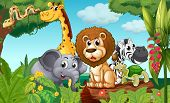 image of venomous animals  - Illustration of a forest with a group of animals - JPG