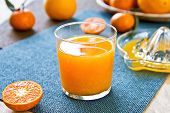 stock photo of satsuma  - Fresh Orange juice by some Oranges and Orange squeezer - JPG