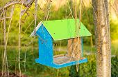 image of nesting box  - Green wooden bird nest box - JPG