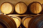 picture of fermentation  - Oak barrels for fermentation of the wine - JPG