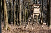 foto of leafy  - hunting forest lookout tower in the leafy woods - JPG