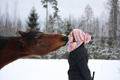 pic of horse girl  - Beautiful teenager girl playfully kissing brown horse in winterforest  - JPG