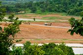 stock photo of truck farm  - Truck in tea field in northern Thailand - JPG