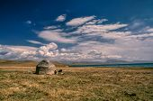 picture of grassland  - Traditional yurt of nomadic tribe on green grasslands in Kyrgyzstan