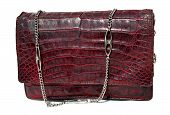 image of crocodile  - Handbag from crocodile genuine leather and metal strip - JPG