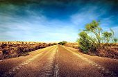 foto of road trip  - Desert road - JPG