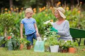 picture of granddaughter  - Happy grandmother with her granddaughter gardening on a sunny day - JPG