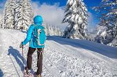 picture of down jacket  - Young woman in down jacket hiking with snow shoes in winter scenery - JPG