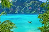 stock photo of phi phi  - Paradise bay on Phi Phi Island with colorful long tail boats - JPG