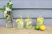 picture of ice crystal  - Table decorated with apple tree blooms in backyard is served cold Lemonade in decorated with crystals brown sugar jar glasses Ice cubes slices lemon limes and drinking straws - JPG