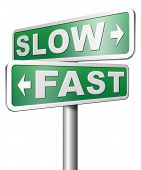 picture of rats  - fast or slow pace - JPG