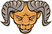 picture of ram  - Illustration of a ram head facing front set on isolated white background done in cartoon style - JPG