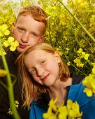 picture of rape  - young Boy and girl in rape field - JPG