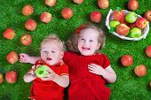image of healthy eating girl  - Child eating apple - JPG
