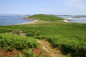 foto of samson  - walking along the path on the deserted island of samson isles of scilly - JPG